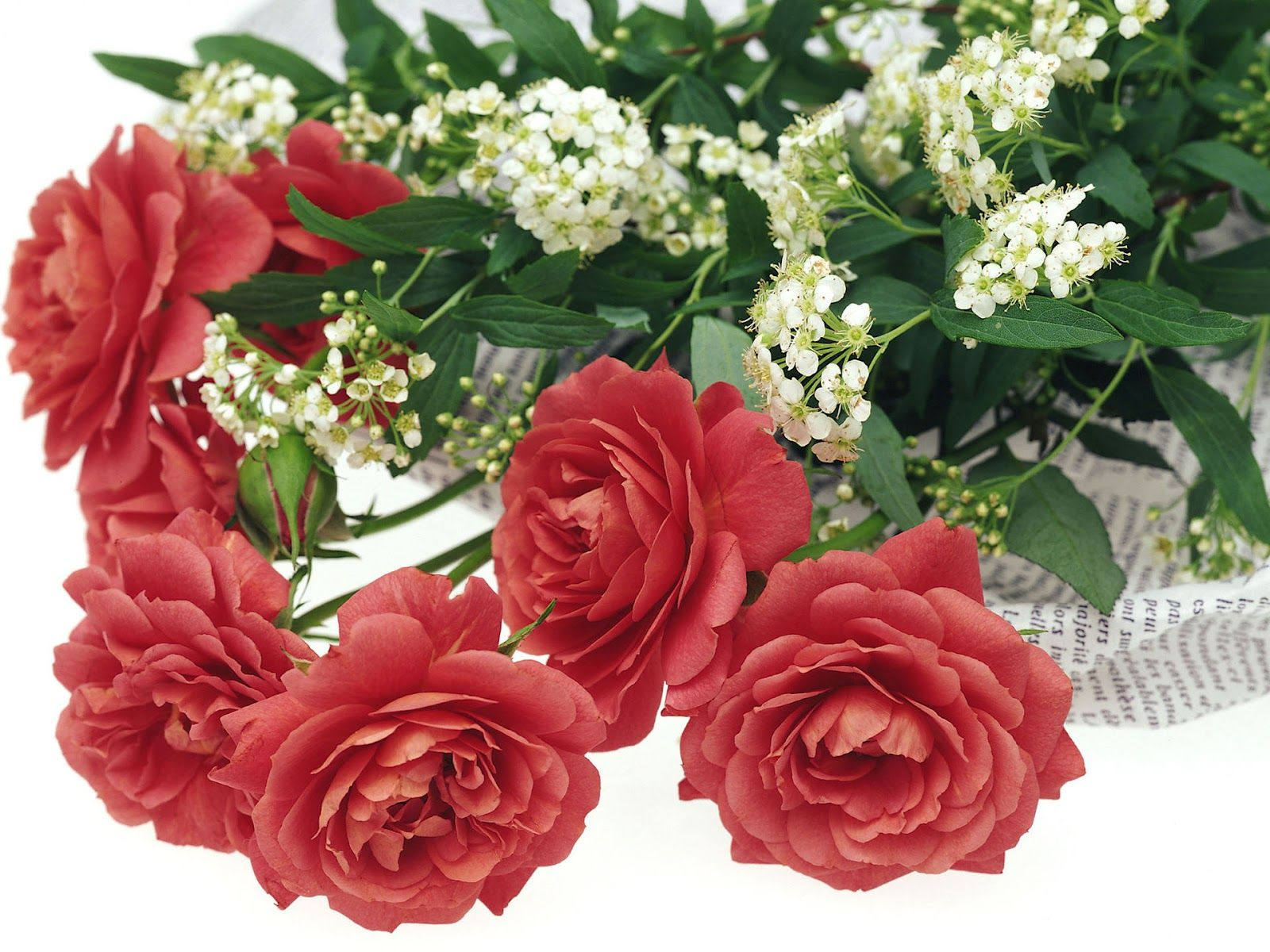 Romantic Flowers With Images