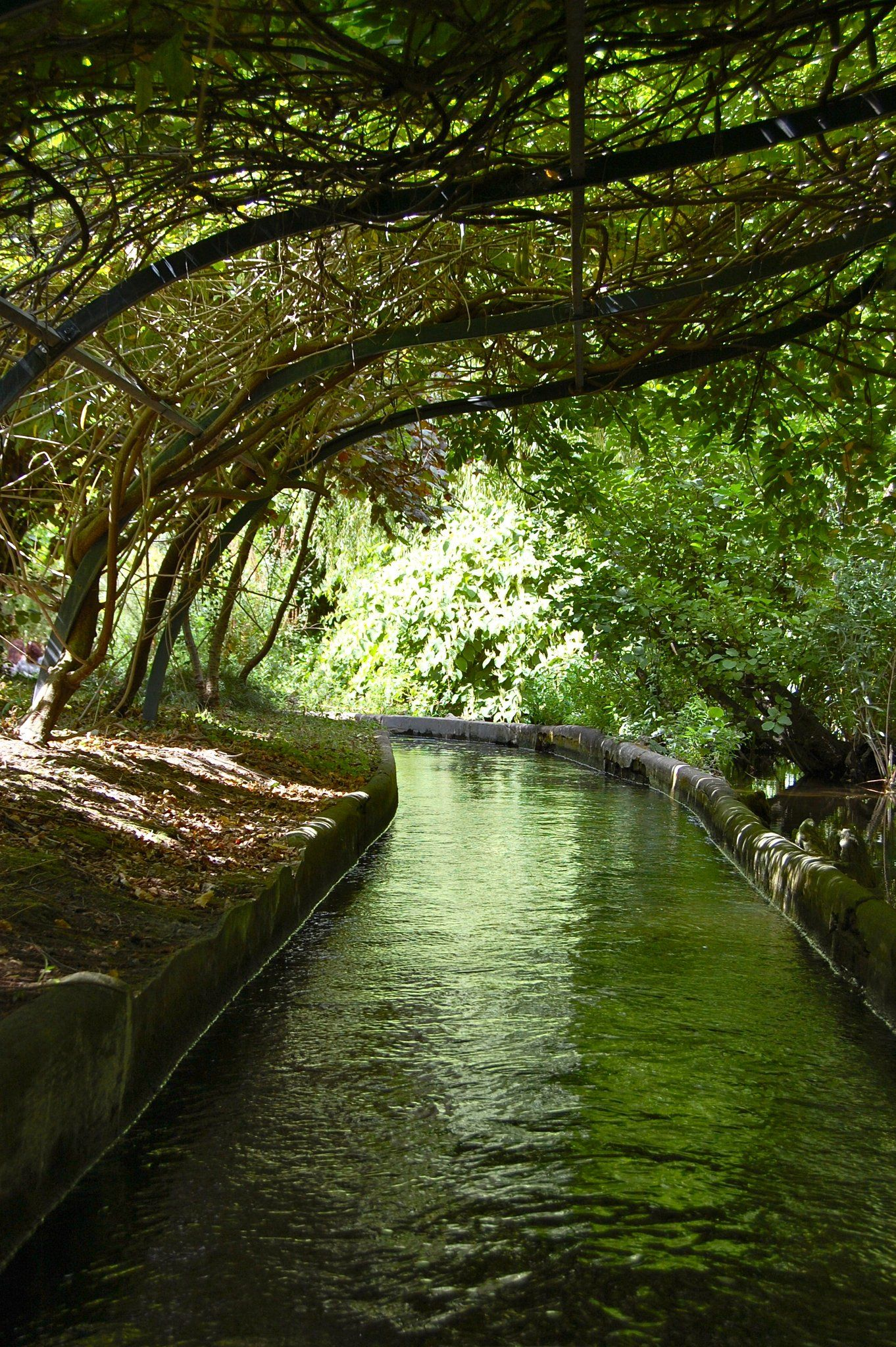 le jardin d acclimatation en t paris - Le Jardin D Acclimatation