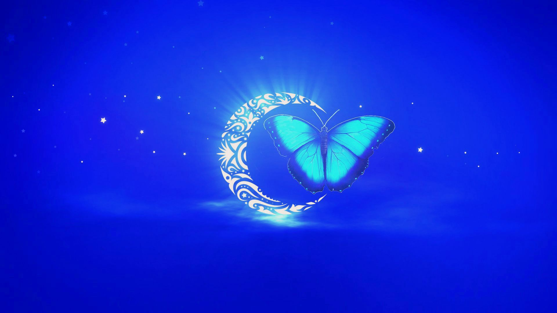 Картинки бабочек на синем фоне