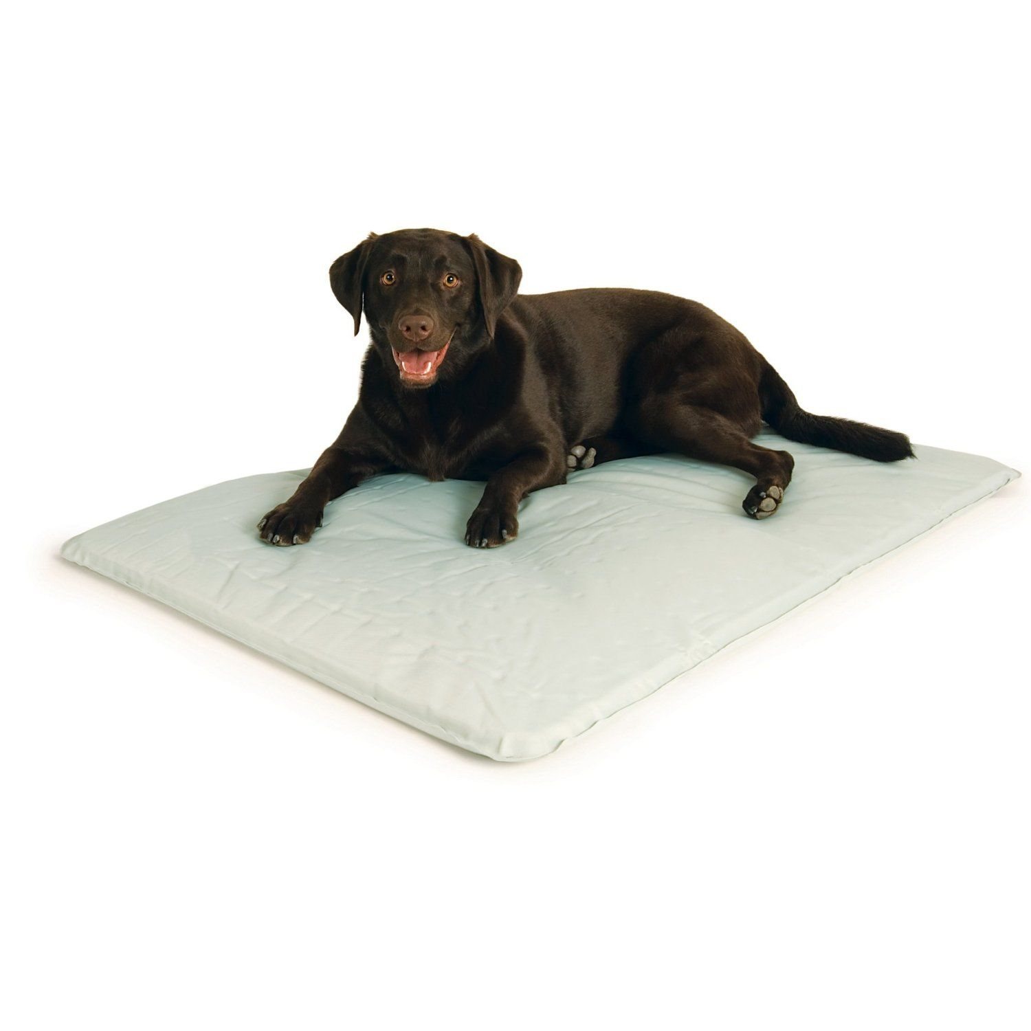 Amazon Com K H Cool Bed Iii Cooling Dog Bed Large 32 Inches By