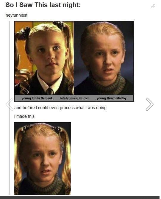 Draco Harry Potter Memes Harry Potter Memes Hilarious Harry Potter Jokes