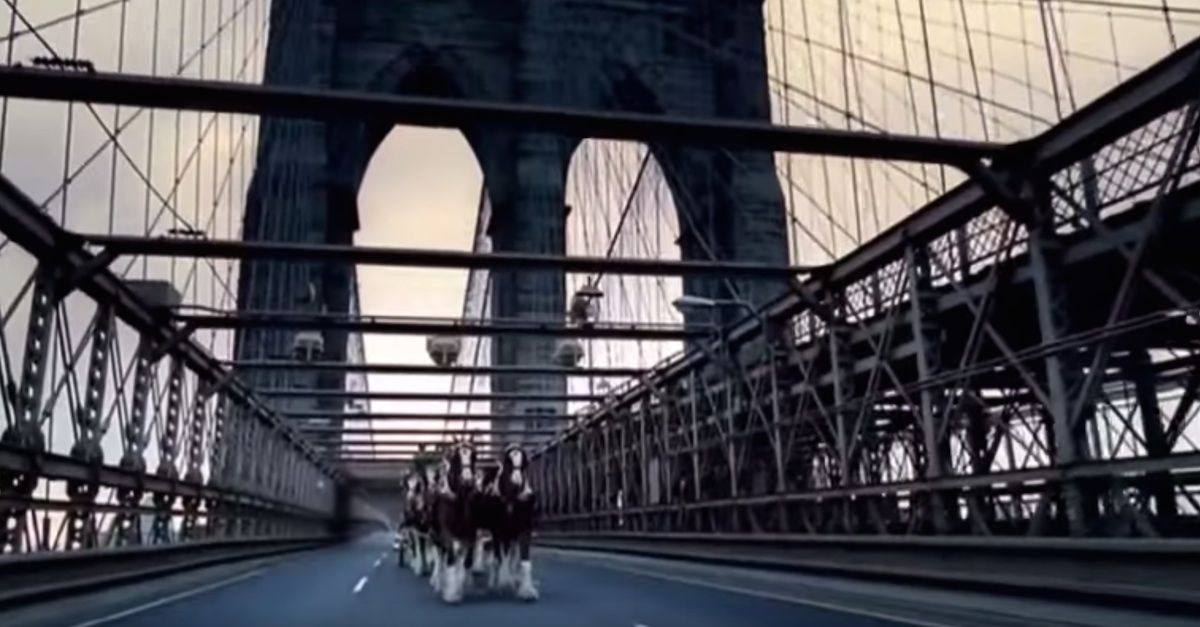 Budweisers Clydesdales Salute Nyc S Skyline In Heart Wrenching September 11th Tribute Budweiser Commercial Air One Behind The Scenes