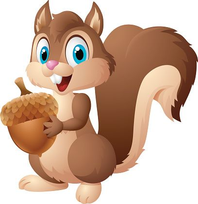 Cartoon Squirrel Holding Acorn Vector Art Illustration Art Drawings For Kids Squirrel Illustration Squirrel Clipart