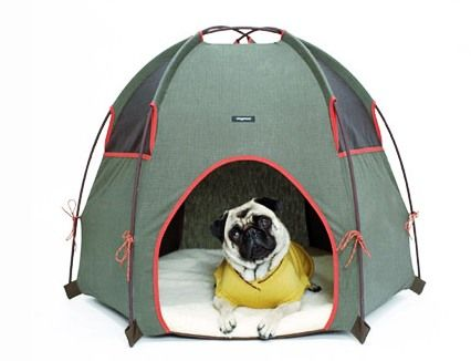 Hot Or Not Hound Lounge Indoor Dog House Dog Tent Dog Houses