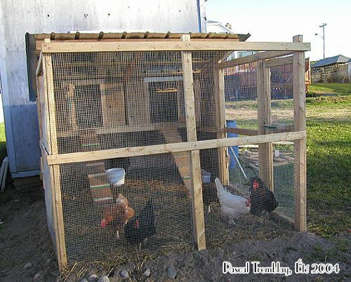 build poultry house build hen house poultry house. Black Bedroom Furniture Sets. Home Design Ideas