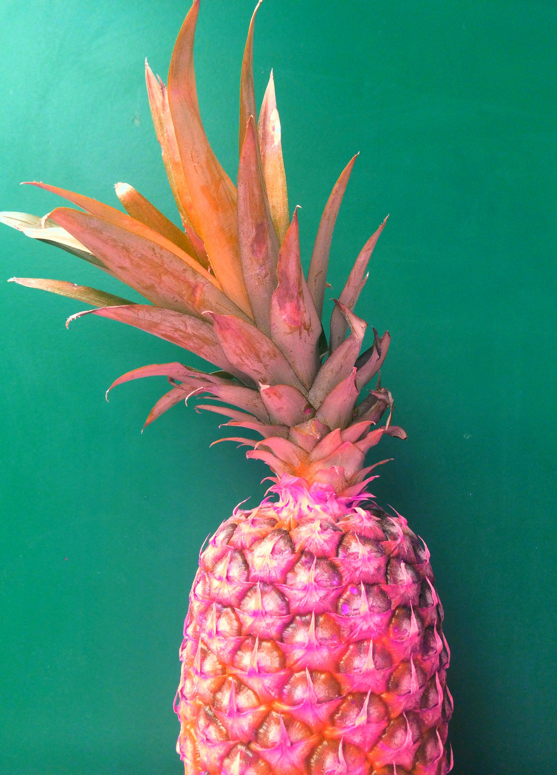 pineapple is the king! (With images) | Pineapple, Cute ...