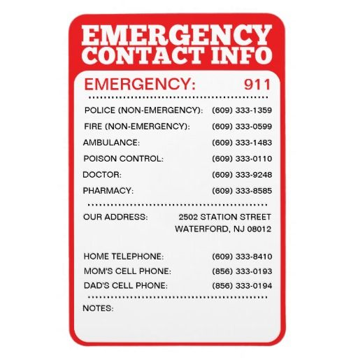 Emergency Contact Information List Magnet   Emergency Phone Number List  Template  Phone Number List Template