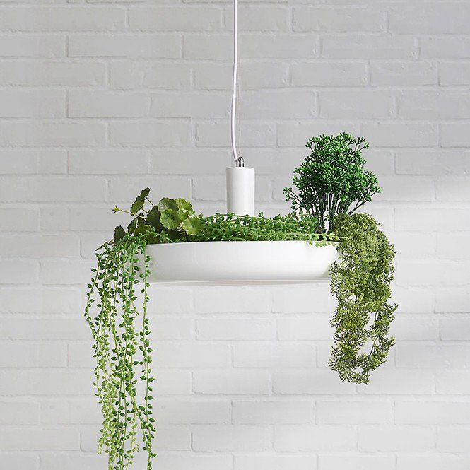 Hanging Garden Plant Pendant Light is part of Hanging garden Lighting -  NZ220~240volt    Free Shipping Eligibility  FREE shipping for orders above $150 to the USA, Canada, United Kingdom, Australia, New Zealand, Belgium, Netherlands, Germany, Singapore, Japan and South Korea