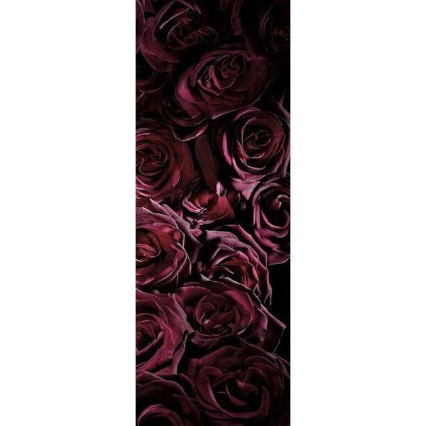 rose170513_002 ❤ liked on Polyvore