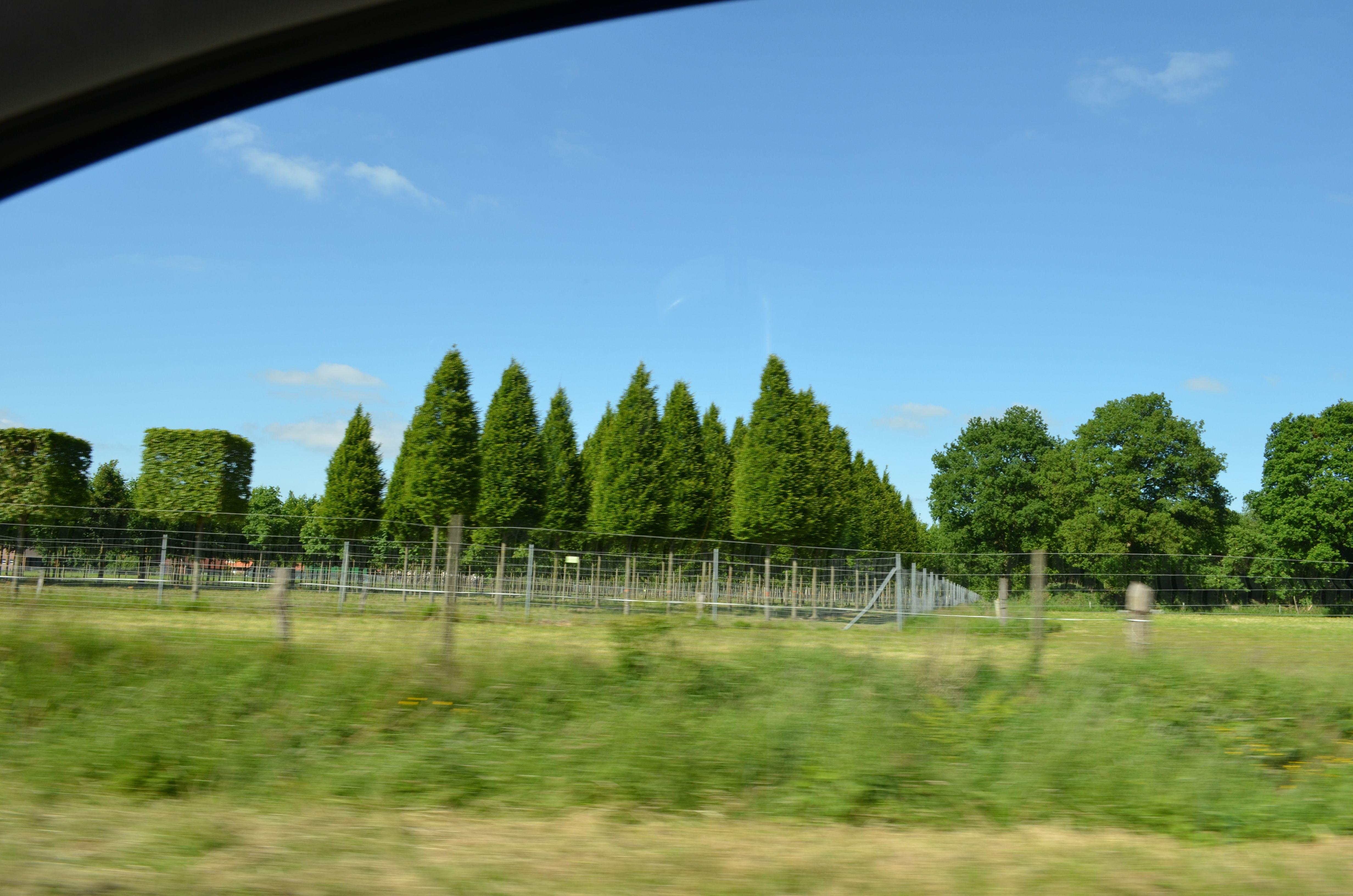 Pin Auf Parks Und Garten In Ostfriesland