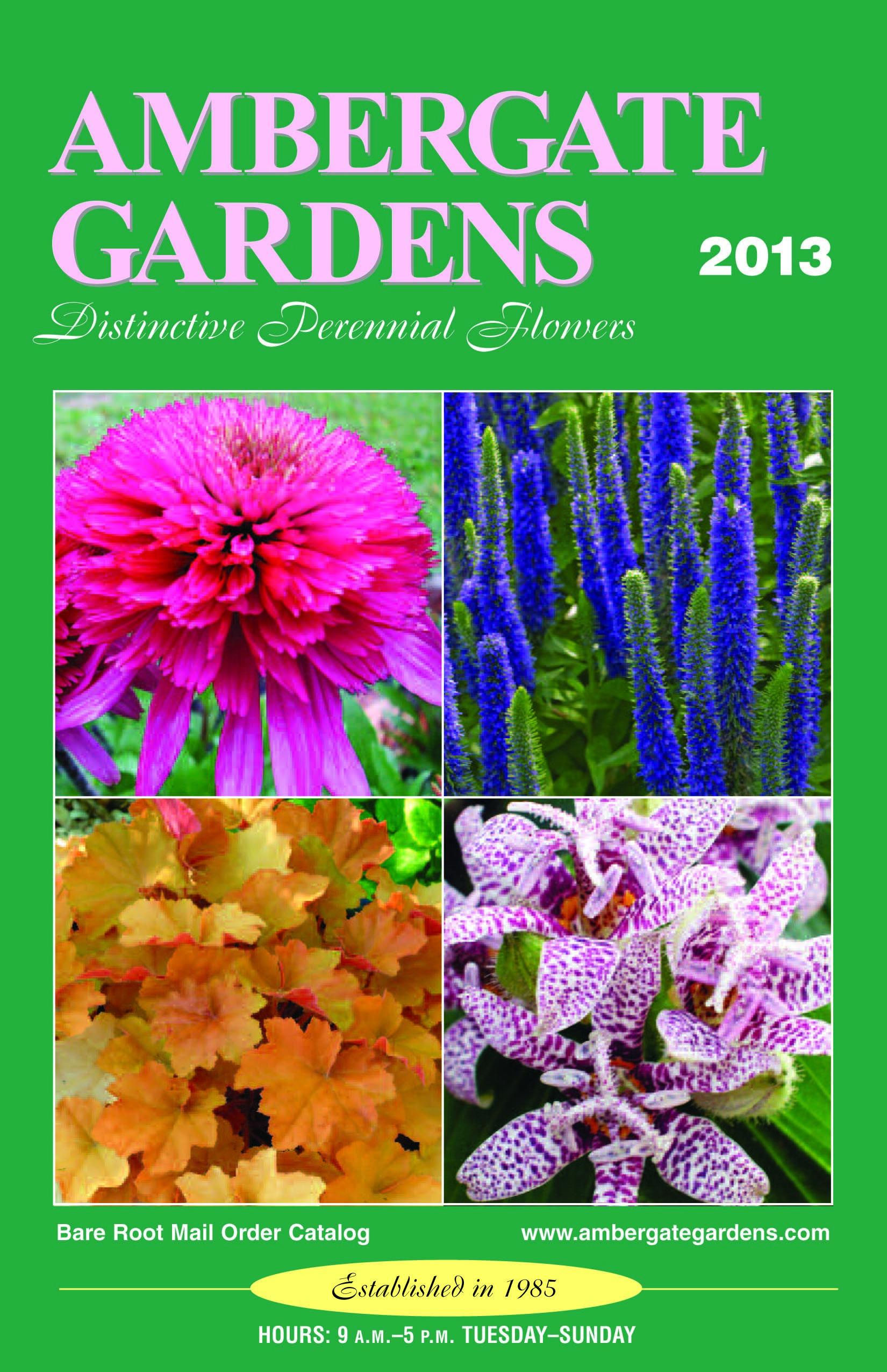 Ambergate Gardens 2013 Perennial Catalog Gardening Pinterest