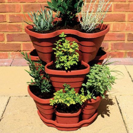 Herb Planter Awesome Strawberryherb Planter  Notcutts  Notcutts  Out In My Garden Inspiration