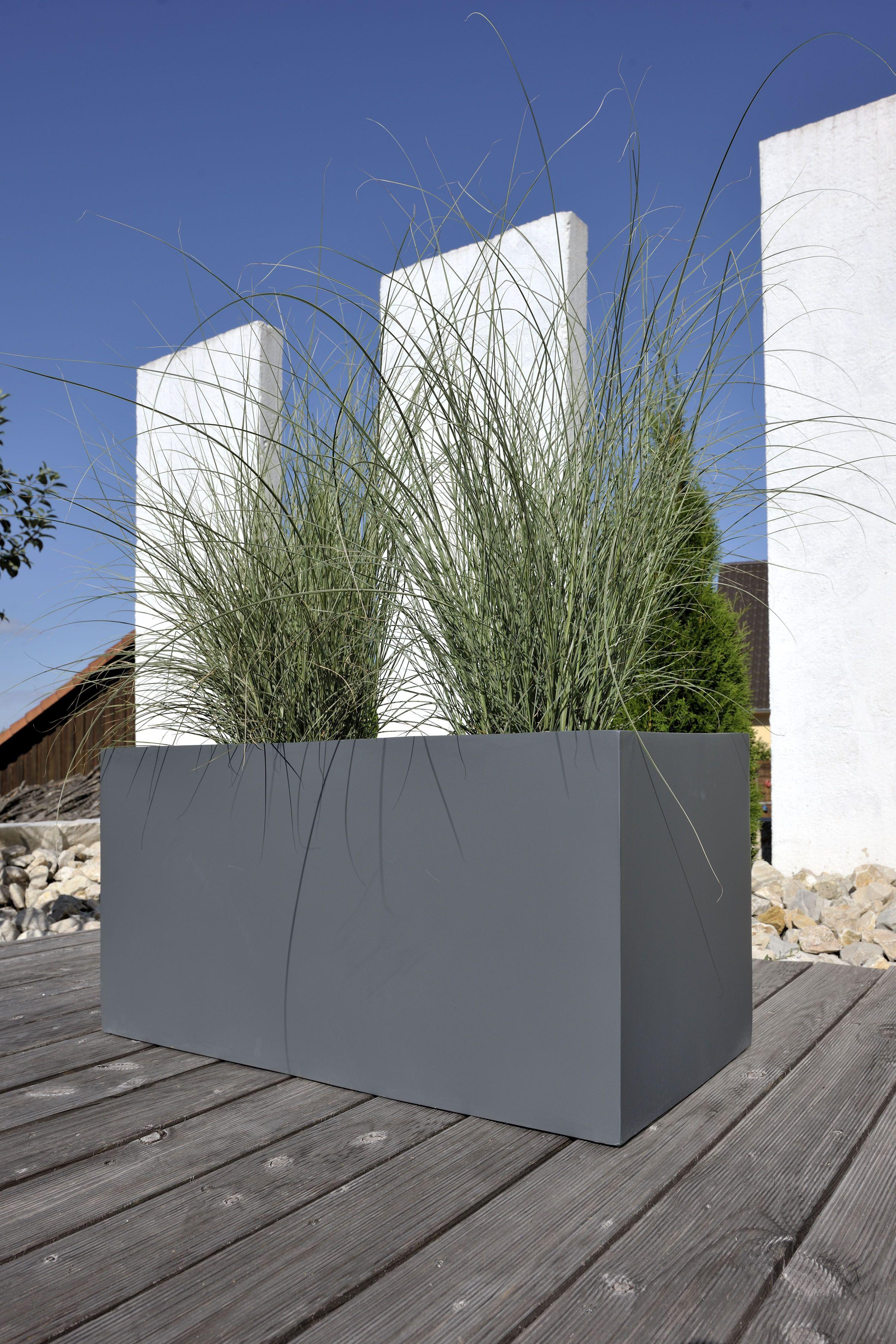 Pin Von K S Auf Garten Mit Bildern Pflanzkubel Bepflanzung