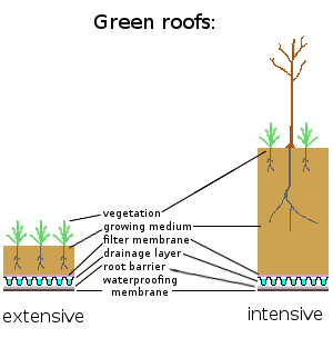Photo 5 Of 7 In 4 Easy Steps To Creating Your Own Diy Green Roof Green Roof Extensive Green Roof Roof