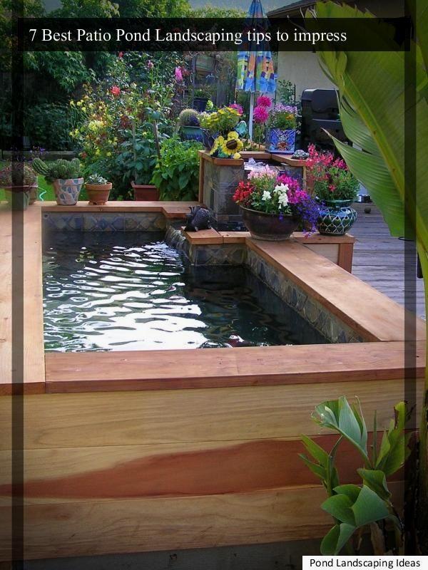 >8 Wonderfully Amazing and Low Maintenance Pond ...