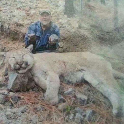 Killed in Ukiah, California. That is one scary huge ...