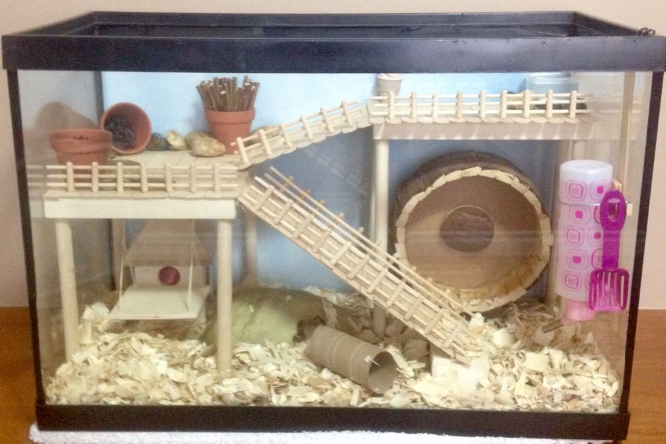 Verbazingwekkend Sophie Little's hamster cage. DIY aquarium conversion. | Hamster UU-99
