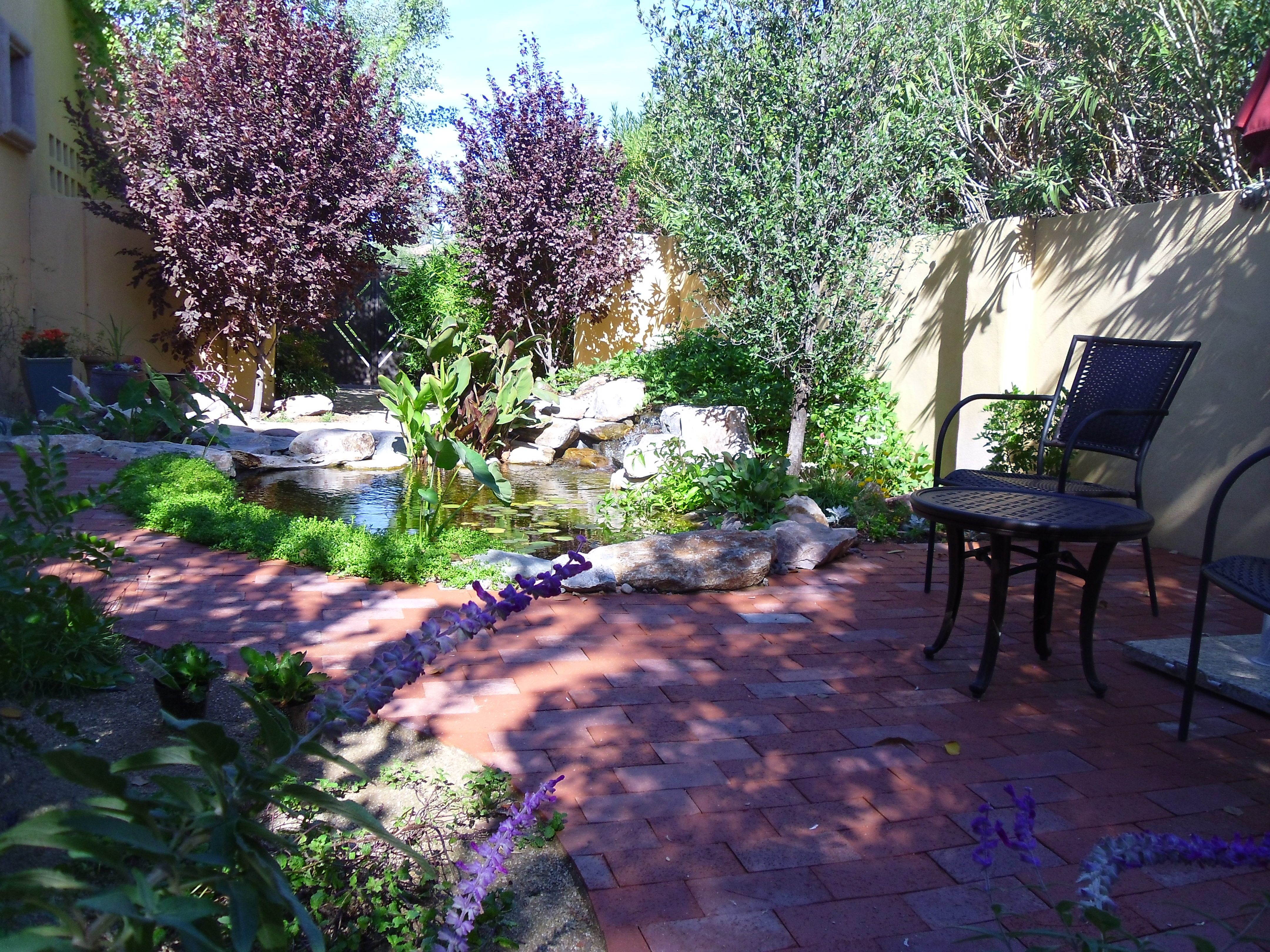 Koi Pond Contractor & Installation In Phoenix Az And Surrounding