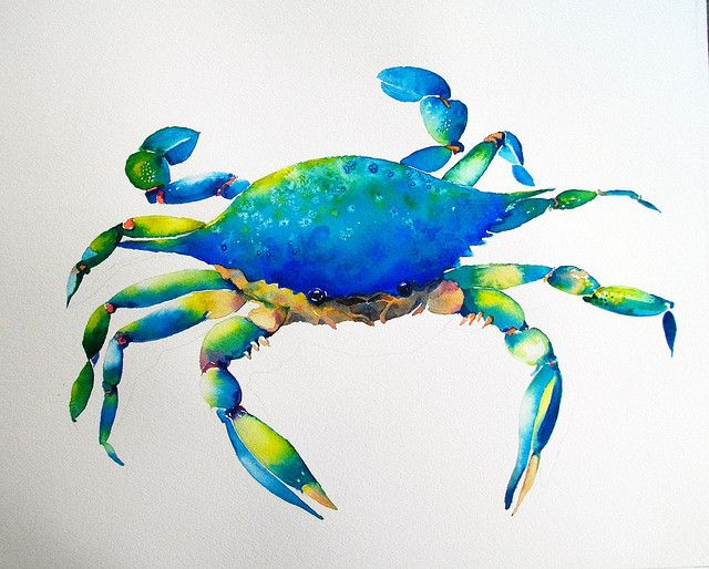 Blue Crab Crab Art Crab Painting Watercolor Art