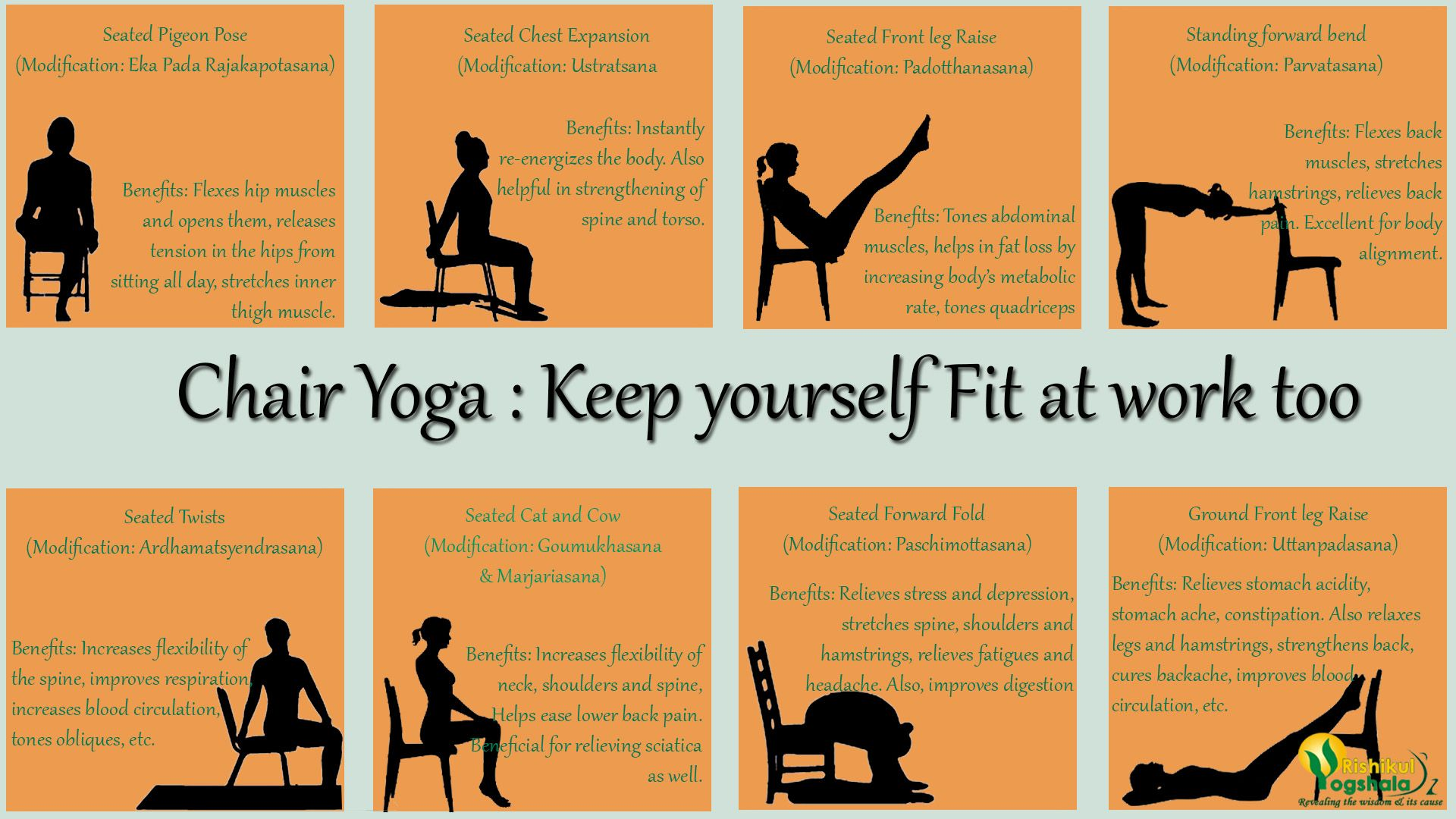 Chair yoga poses - Most Recommended Chair Yoga Poses For Keep Yourself Fit At Work By Rishikul Yogshala