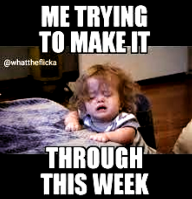 Check Out Some New And Funnies Memes On Our Board We All Need A Good Way To Relax In Leisure Time Try Lmao Meme In 2020 Work Humor Work Quotes Funny