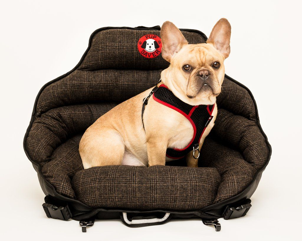 Plaid Original PupSaver (For All Dogs Up To 30 lbs) Dog