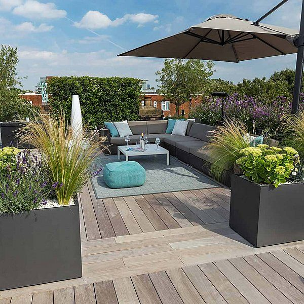 Roof Top Garden Terrace Garden Kitchen Garden Vegetable: Bermondsey Roof Terrace Southwark In South London