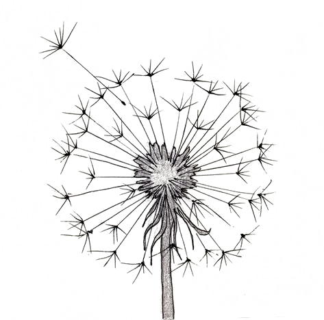 99 Insanely Smart Easy And Cool Drawing Ideas To Pursue Now In 2020 Cute Flower Drawing Simple Flower Drawing Easy Flower Drawings