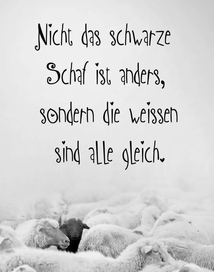 1874 Best zitate images in 2020 | Quotes, About me blog
