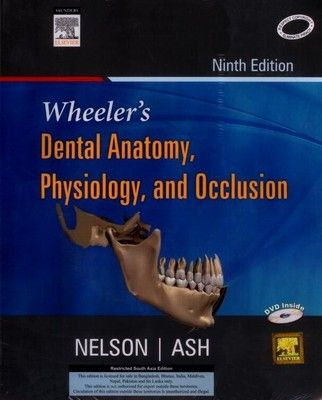 Wheeler\'s Dental Anatomy, Physiology and Occlusion (English) 9th ...