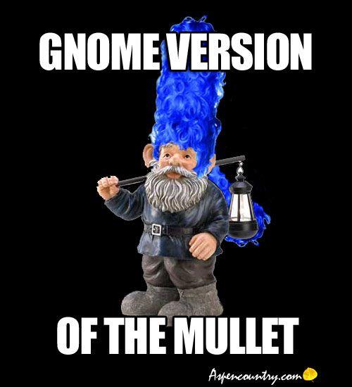 2f5ceb6e8498327ae9faf983bdb02466 gnome meme gnome version of the mullet! hair don'ts bad hair