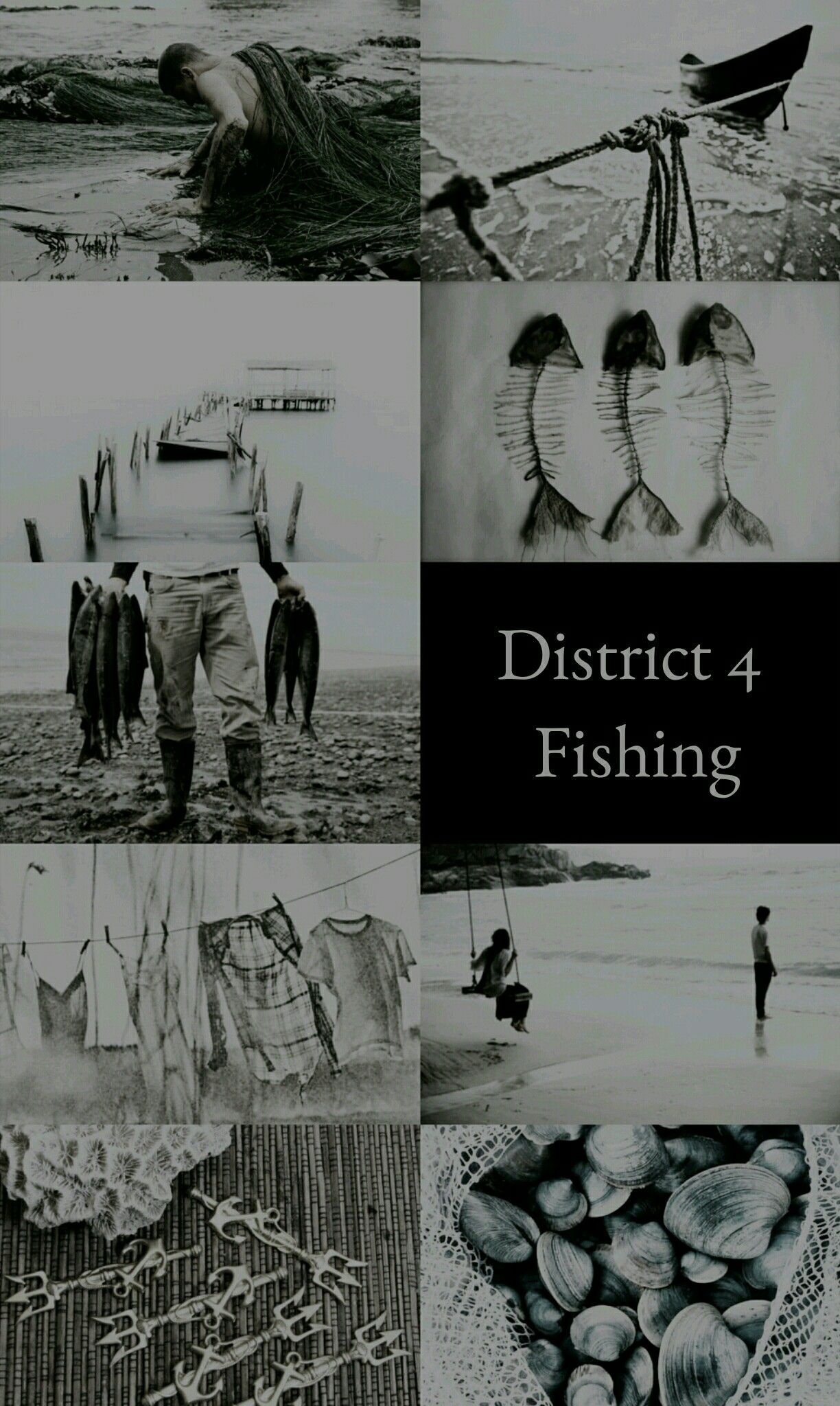 the hunger games the districts