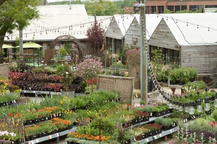 Shop Talk Our Designer Favorites From Terrain Garden Center