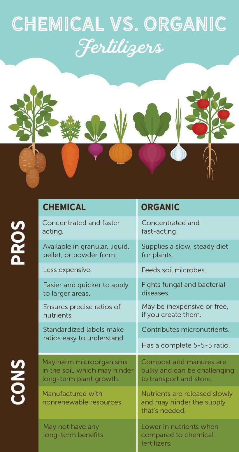Fertilizer Helps Your Lawn Stay Healthy By Promoting New Leaf And Root Growth But What Is Better Organic Or C Organic Gardening Tips Organic Gardening Organic