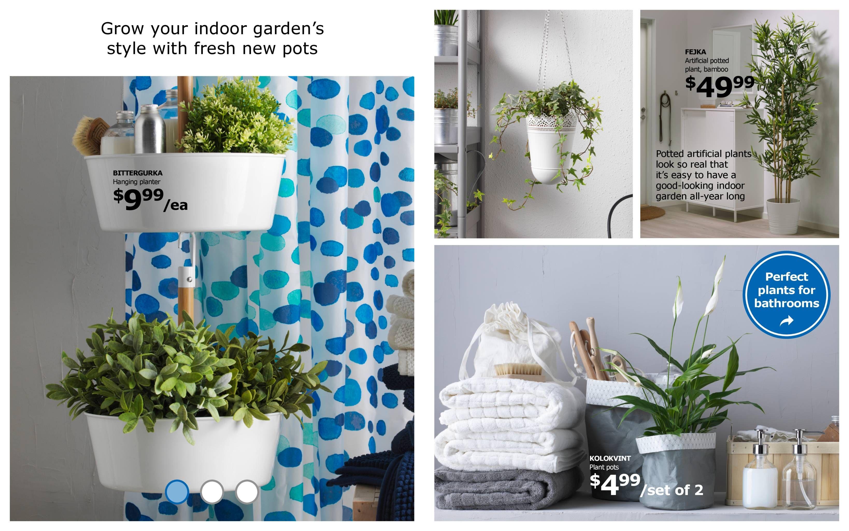 Plant Decor By Carissa Velasquez On Home Bathroom Plants Indoor