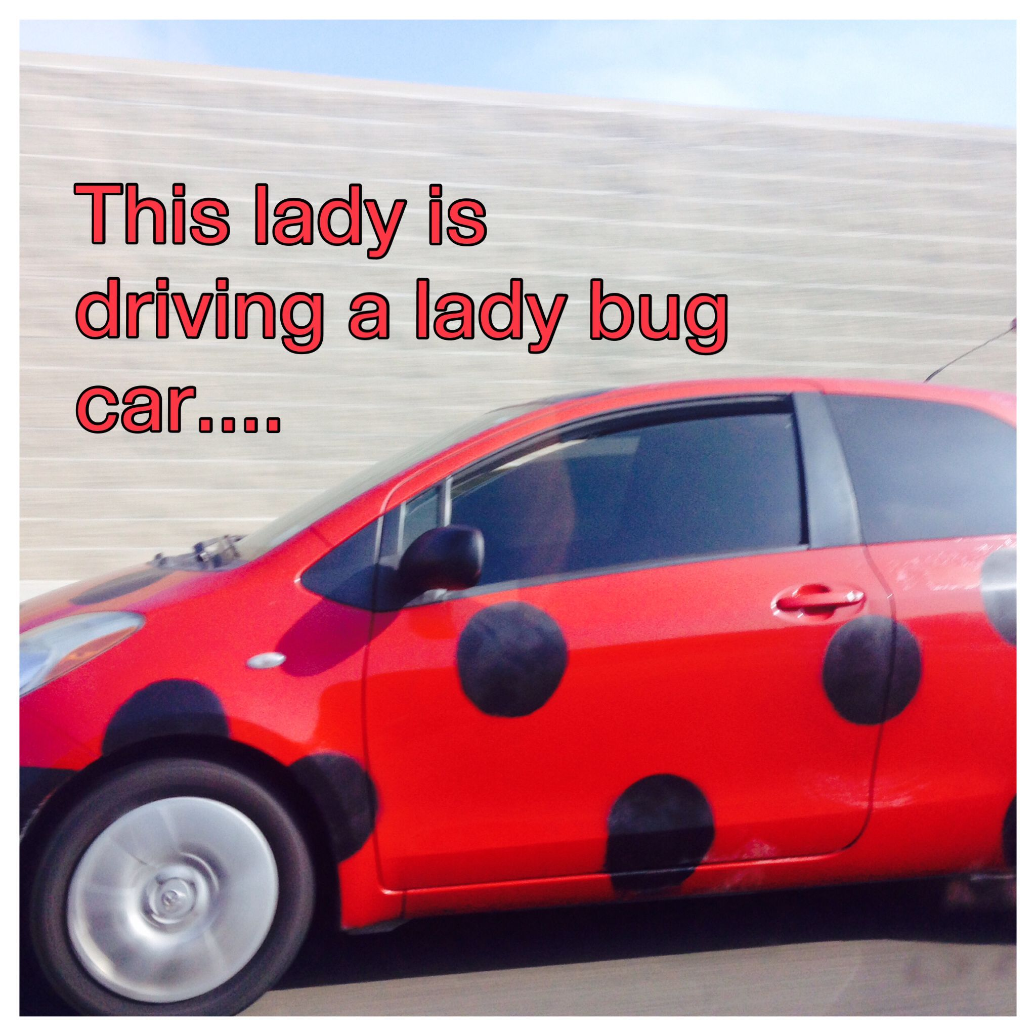This Is To Funny Lol P Bug Car Toy Car Lol