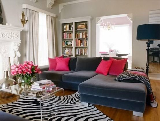 Awesome Pink And Gray Living Room, Lucite Coffee Table, Zebra Rug, With Built In  Bookshelf Inspiration Part 19