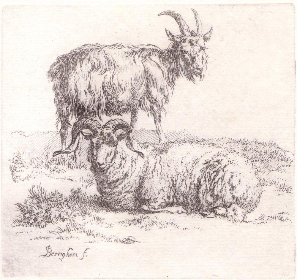 Animalia rams sheep nicolaes pieterszoon berchem 1620 1683 items similar to nicholas berchem a goat and a ram etching 1660 on etsy buycottarizona