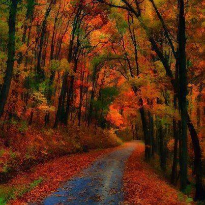 truly Autumn
