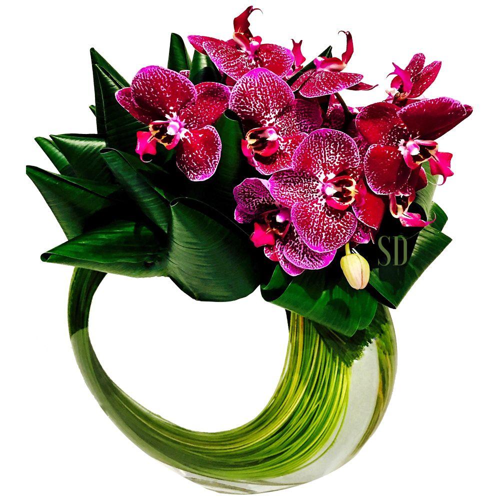 Af17512 Orchid flower arrangements, Large flower