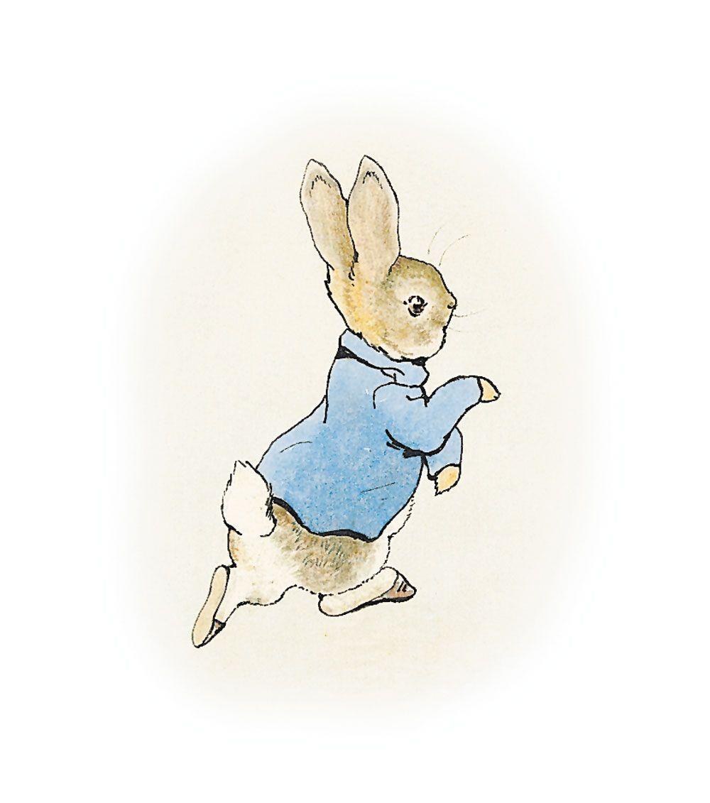 classic rabbit pose | Illustration to The Tale of Peter Rabbit, 1902 | bunbuns | Peter rabbit