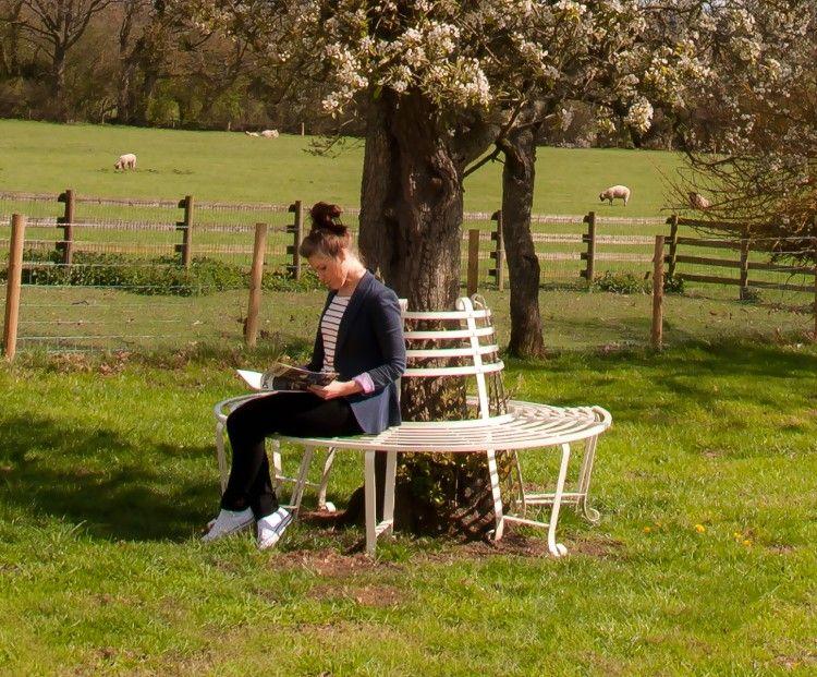 tree seats garden furniture. \ Tree Seats Garden Furniture