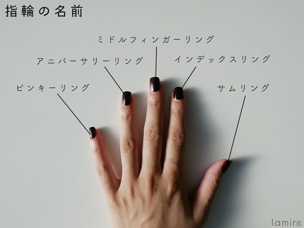 左右10本の指には意味がある 指輪をはめる位置で変わるパワーとは lamire ラミレ 指輪 意味 指輪 イラスト 指輪