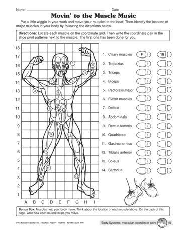 muscular system 7th grade science worksheet muscular best free printable worksheets. Black Bedroom Furniture Sets. Home Design Ideas
