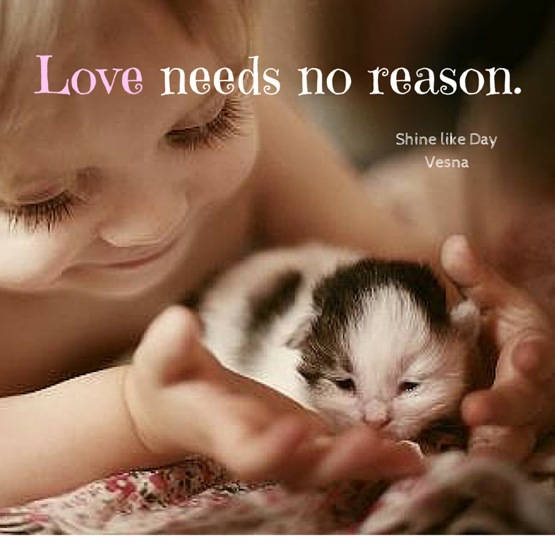 Loving Kindness Quotes Prepossessing Love Needs No Reason‿︵‿︵‿︵ Love Lovingkindness Quotes
