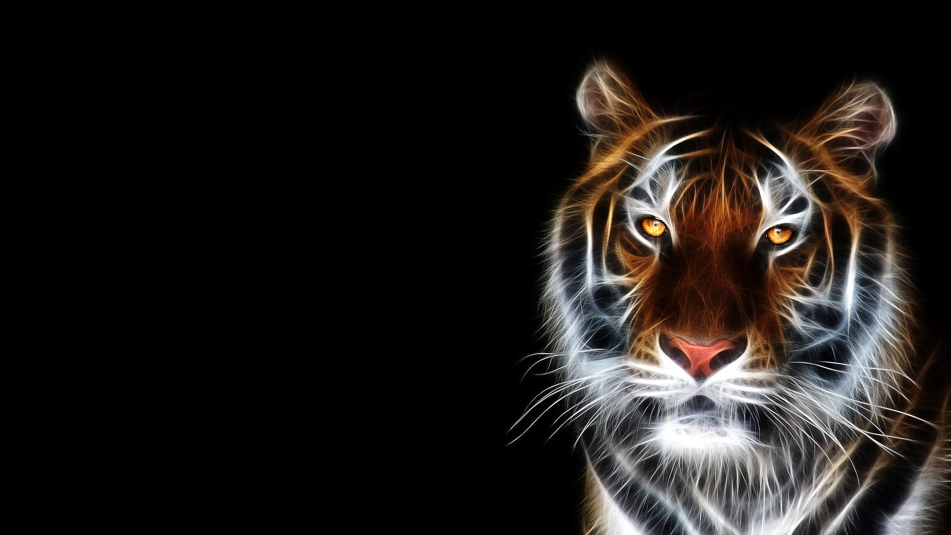 Download Free Wallpaper Gallery 1920 1080 1920 1080 Wallpapers Free Download 41 Wallpapers Adorable Wallpapers Big Cats Art Animals Beautiful Animals