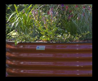 Slimline Raised Garden Beds Waterplex garden bed