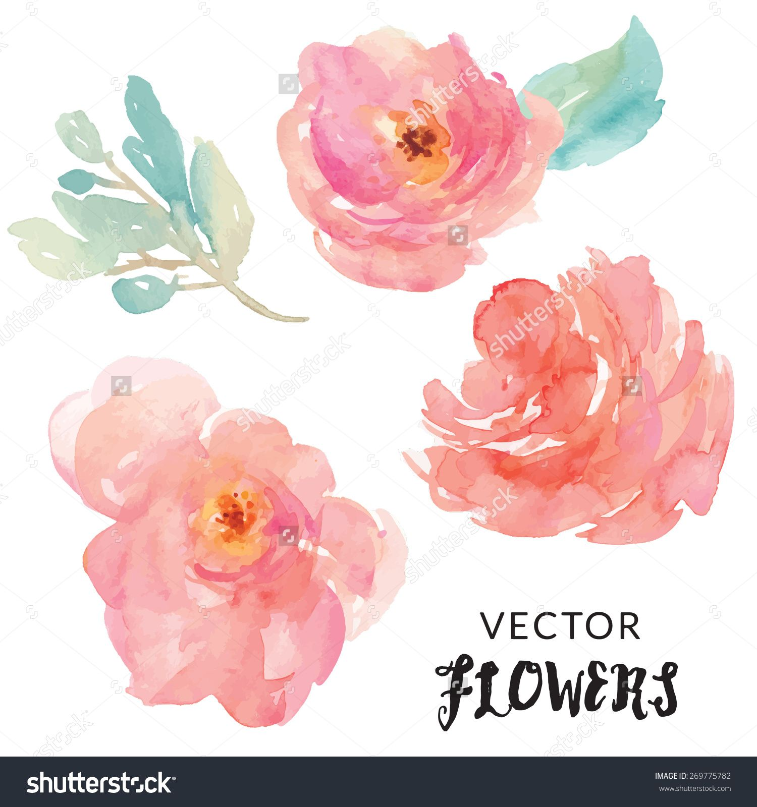 Hand Painted Watercolor Flower Vector Watercolor Vector Flowers