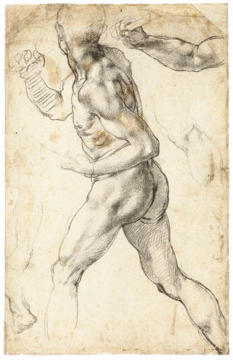 Michelangelo drawings | Boceto | Pinterest | Anatomía, Figuras ...