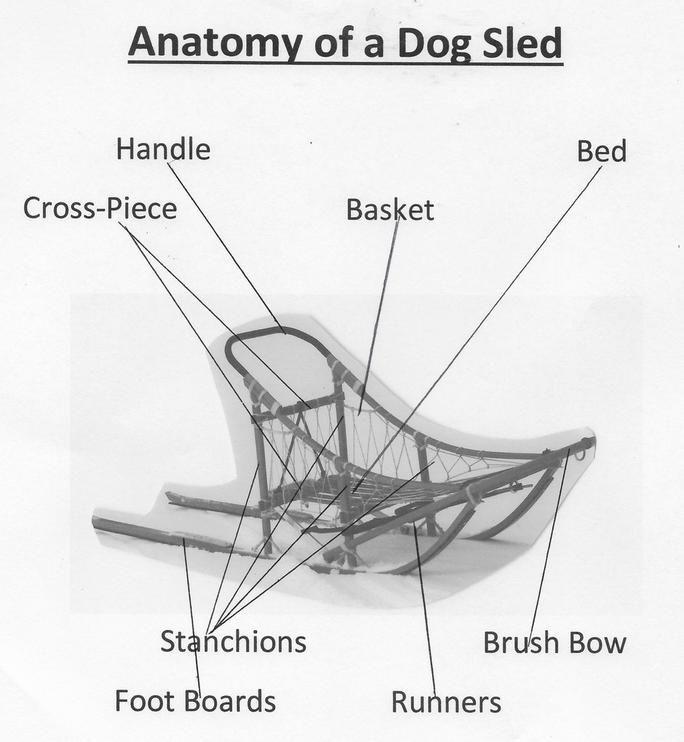 Dog Sled Diagram | Dog sledding, Sled, Dogs